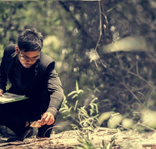 forest researcher inspecting forest floor